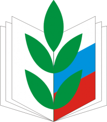 logo_pfsouz